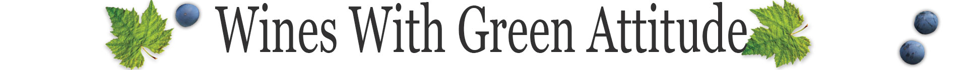 Green-Attitudes-Divider--wines-with-green-attitude