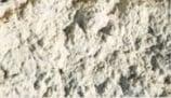 Soil 2.jpg